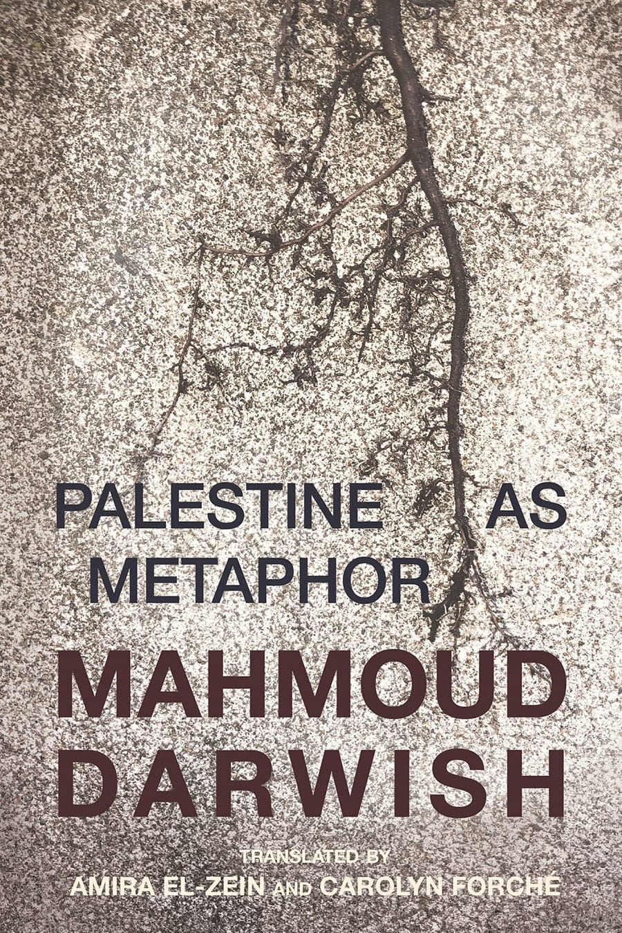 Palestine as Metaphor